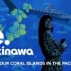 Discover Okinawa
