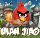 Angry Birds – Tulan Jiao