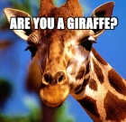Are You A Giraffe? Take The Great Giraffe Challenge (Facebook Riddle)